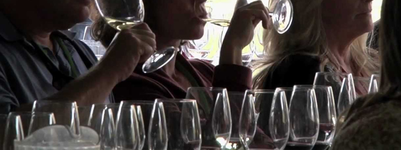 Vintage Ohio Wine Tasting Festival